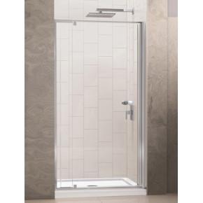 Душевая дверь в нишу RGW Passage PA-02 (970-1100)х1850 стекло чистое 04080200-11